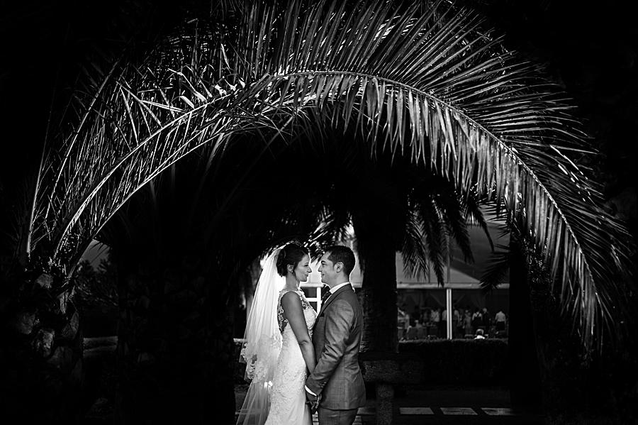 Fotos de boda en el Pazo de San Fernando-01