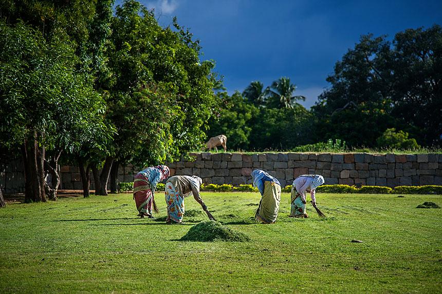 Viaje a India del Sur 2017-0967