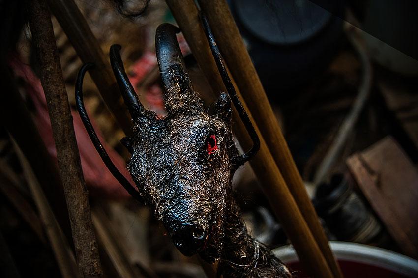 Festa da Cabra e o Canhoto 2019-43